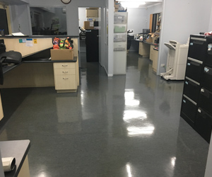 Office Cleaning Warner, Commerical Cleaning QLD, Medical Centre Cleaning Brendale, Strapping & Sealing Strathpine, Vinyl Floor Sealing Bray Park, Child Care Cleaning Lawnton