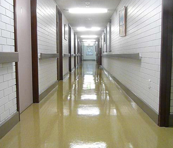 Stripping & Sealing Joyner, School Cleaning Strathpine, Child Care Cleaning Lawnton, Commercial Cleaning QLD, Vinyl Floor Sealing Bray Park, Office Cleaning Warner